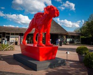 De Rode Hond